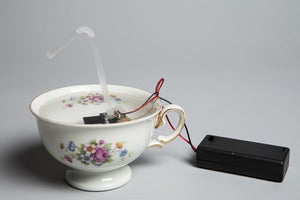Image of Josh Baum, Tea cup, 2011