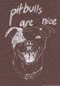Image of Pitbulls Are Nice, patch