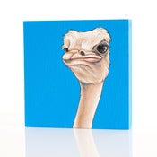 Image of OSTRICH 4X4 PAINTING