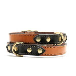 Image of Voyage Collar (Chestnut/Black)