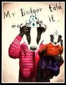 Image of Mr Badger 11 x 14 print