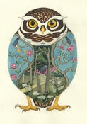 Image of Little Owl - Print