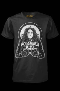 Image of Polamalu Is My Homeboy