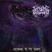 Image of Euphoric Defilement-Ascending To The Worms CD