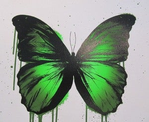 "Image of ""Green Butterfly"" AP by RYCA"