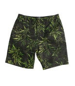 Image of Grand Scheme - Maui Wowie Beach Shorts