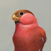 Image of Bullfinch Panel by The Mincing Mockingbird