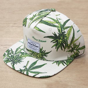 Image of Grand Scheme- Maui wowie snapback natural
