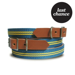 Image of LAST CHANCE! Old School Collar - Stripe 102