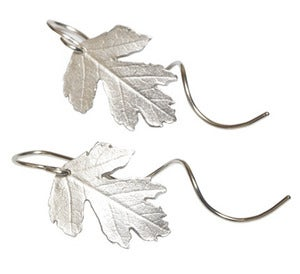 Image of Botanic: hawthorn leaf earring with tendril earwire
