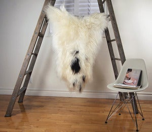 Image of Large Spotted Sheepskin SP-161