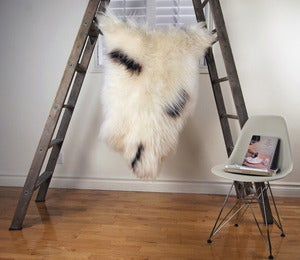 Image of Large Spotted Sheepskin SP-150