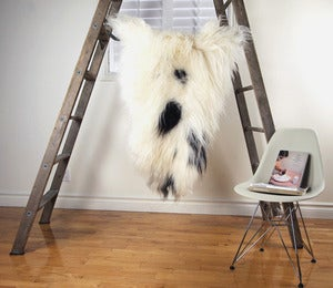 Image of Large Spotted Sheepskin SP-145