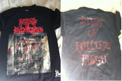 "Image of Stages of Decomposition Shirt ""Piles of Rotting Flesh"""