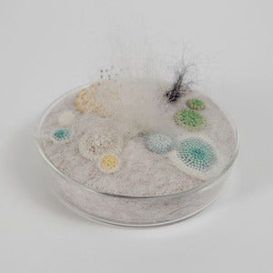 Image of Petri dish in felt with crochet moulds