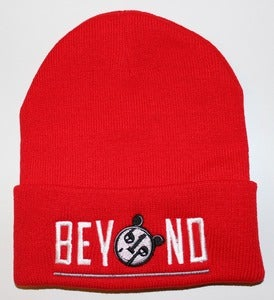 Image of Red Beyond beanie (white/grey)