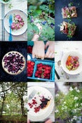 Image of Foraging + Styling Workshop with Aran Goyoaga July 5 + 6 2013
