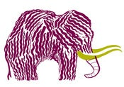 Image of Mammoth Mammoth - Purple
