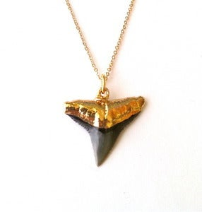 Image of Gold Shark Tooth necklace