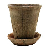 Image of Small Rose Pot with Saucer