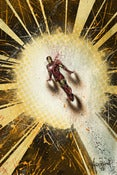 Image of Superhero Smackdown: Iron Man