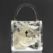 Image of Clear Lucite Light Up Bag