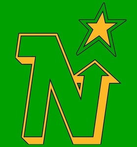 Image of North Stars hockey shirt